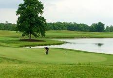 Giocatore di golf sul verde Immagini Stock