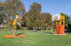 Giocatore di pallacanestro delle zucche Fotografia Stock Libera da Diritti