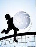 Giocatore di pallavolo Immagine Stock