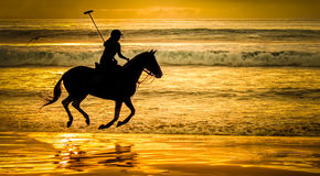 Giocatore di polo sulla spiaggia Fotografie Stock