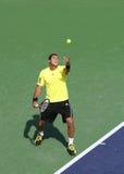 Giocatore di tennis professionale. Fotografie Stock Libere da Diritti