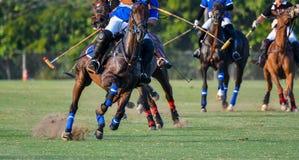 Giocatore e cavallo di polo durante le corse Immagini Stock