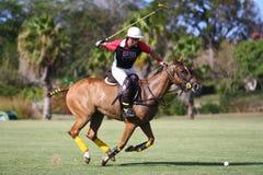 Giocatore maschio di polo Fotografia Stock Libera da Diritti