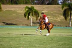 Giocatore maschio di polo Fotografie Stock Libere da Diritti