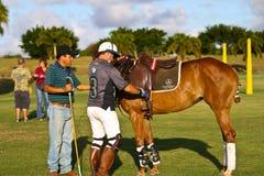 Giocatore maschio di polo Fotografie Stock