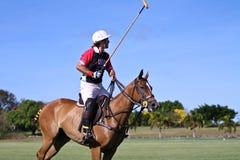 Giocatore maschio di polo Immagine Stock