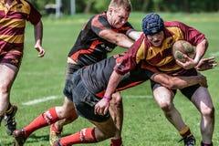 Giocatori del gioco di rugby Immagine Stock