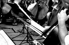 Giocatori del violoncello Fotografia Stock Libera da Diritti