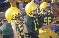 giocatori di football americano della Micro-lega Immagine Stock Libera da Diritti