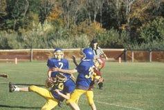 giocatori di football americano della Micro-lega, invecchiati 8 - 11 durante il gioco, Plainfield, CT Immagine Stock