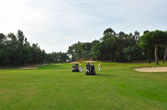 Giocatori di golf, Andalusia, Spagna Fotografie Stock