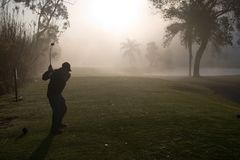 Giocatori di golf di mattina Immagine Stock