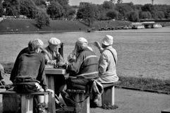 Giocatori di scacchi Immagini Stock