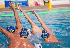 Giocatori di Waterpolo Immagine Stock