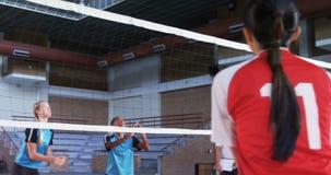 Giocatori femminili che giocano pallavolo nella corte 4k stock footage