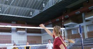 Giocatori femminili che giocano pallavolo nella corte 4k video d archivio