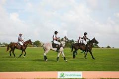 Giocatori maschii di polo Fotografia Stock Libera da Diritti