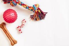 Giocattoli del cane messi: giocattolo variopinto del cane del cotone e palla rosa su un fondo bianco fotografia stock