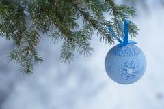 Giocattolo blu dell'pelliccia-albero su un ramo dell'abete blu blu, verde, bianco, abete rosso blu di Colorado, picea pungens cop Immagini Stock Libere da Diritti