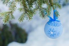 Giocattolo blu dell'pelliccia-albero su un ramo dell'abete blu blu, verde, bianco, abete rosso blu di Colorado, picea pungens cop Immagini Stock