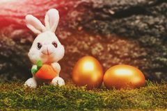 Giocattolo del coniglio, uova di Pasqua dorate su muschio verde, corteccia di albero Fotografia Stock Libera da Diritti