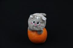 Giocattolo del gatto ed un'arancia Immagine Stock
