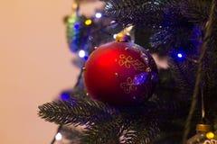 Giocattolo del nuovo anno sul pino Fotografia Stock Libera da Diritti