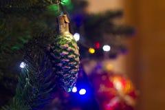 Giocattolo del nuovo anno sul pino Immagini Stock