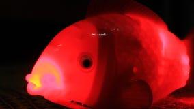 Giocattolo del pesce per i bambini archivi video