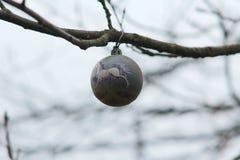 Giocattolo dell'albero di Natale che appende su un ramo fotografia stock libera da diritti
