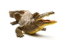 Giocattolo dell'alligatore di vista frontale su fondo bianco Fotografia Stock