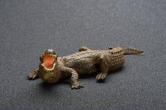 Giocattolo dell'alligatore su fondo scuro Immagine Stock Libera da Diritti