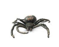 Giocattolo di gomma falso del ragno isolato Fotografia Stock Libera da Diritti