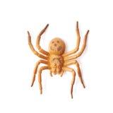 Giocattolo di gomma falso del ragno isolato Immagine Stock