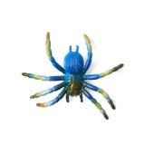 Giocattolo di gomma falso del ragno isolato Fotografie Stock Libere da Diritti
