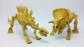 Giocattolo di scheletro del dinosauro del triceratopo e di stegosauro fotografie stock