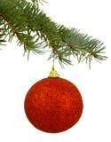 Giocattolo rosso di Natale su un ramo Fotografia Stock