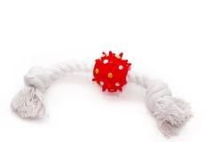 Giocattolo rosso e bianco dell'animale domestico Immagine Stock Libera da Diritti