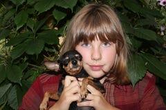 Giocattolo-terrier russo con il suo proprietario Fotografia Stock