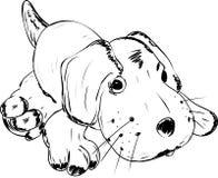 Giocattolo - un cane di menzogne Immagini Stock
