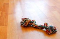 Giocattolo variopinto del cucciolo di cane sul pavimento Fotografie Stock