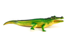 Giocattolo verde del coccodrillo isolato su bianco Fotografia Stock