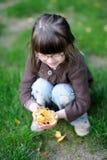 Giochi adorabili della bambina con i fogli gialli Fotografie Stock Libere da Diritti