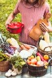 Giochi adorabili della ragazza con le verdure Immagine Stock