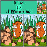 Giochi dei bambini: Differenze del ritrovamento Piccolo scoiattolo sveglio Fotografia Stock Libera da Diritti