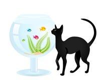 Giochi del gatto con un piccolo pesce Immagini Stock Libere da Diritti