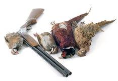 Giochi di caccia Fotografie Stock Libere da Diritti