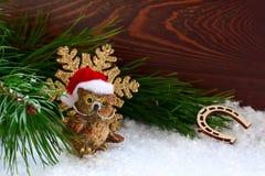 Giochi il gufo ed il fiocco di neve di Natale come congratulazione con il Natale Immagini Stock