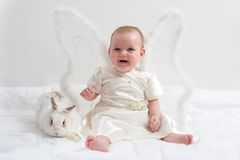 Giochi leggiadramente con coniglio bianco Immagine Stock Libera da Diritti