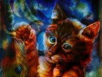 Gioco capo del gatto arancio radiante e dell'uccello con una piuma del pavone, Fotografie Stock Libere da Diritti